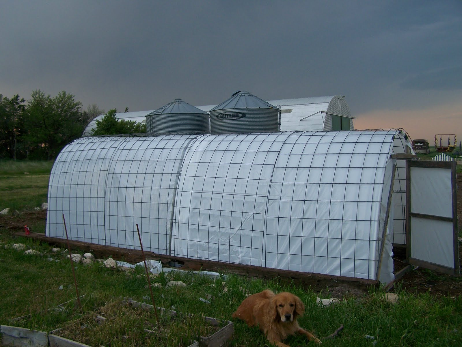 finished greenhouse side